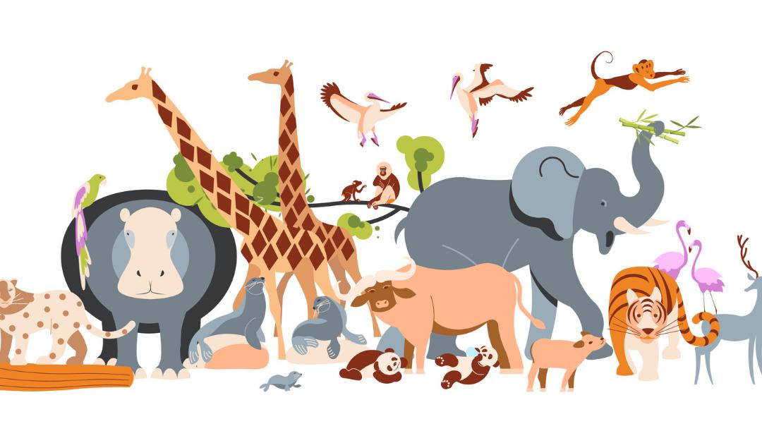 La zoologia: cosa nasconde il mondo animale ?